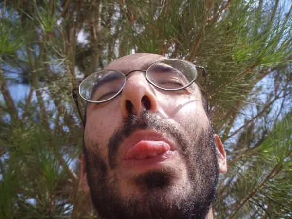 BeardForest
